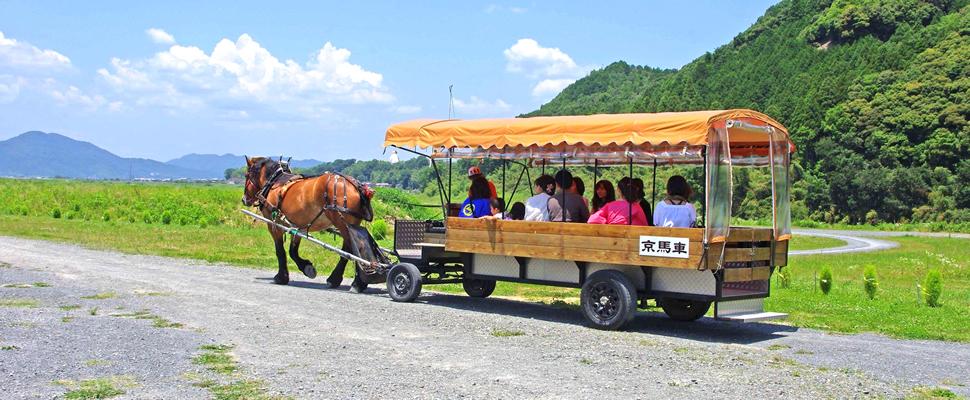 京馬車。実際に馬車に乗ることができます。