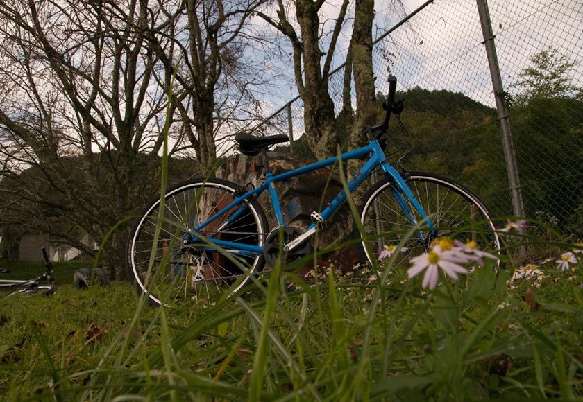 レンタル自転車はアメリカTREK(トレック)社のクロスバイク「FX2」。ロードバイク購入予定の方にも一度は試していただきたい自転車です。