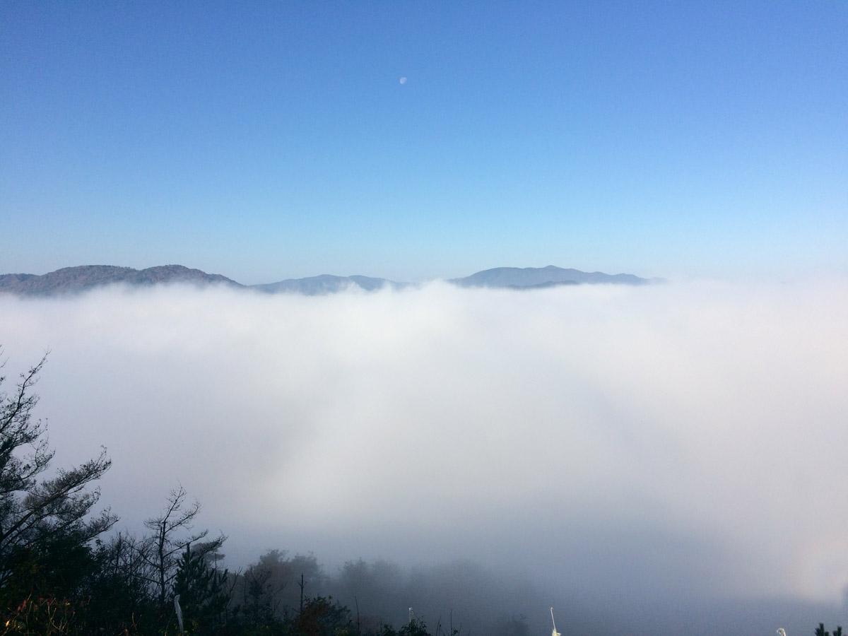 「霧のテラス」から見る雲海の眺望。亀岡盆地がすべてきりに覆われてまるで湖のようになっています。